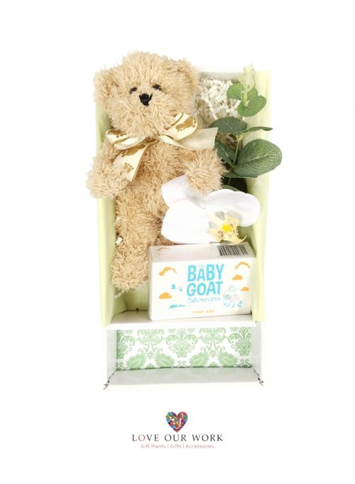 A gift box teddy time plush bear (hypo-allergenic & baby safe)