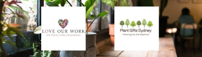 https://www.plantgiftssydney.com/