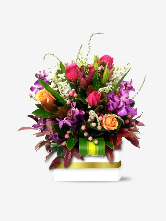 Online Florist Sydney for Gift Flowers & Plants. Stunning brightly coloured flowers